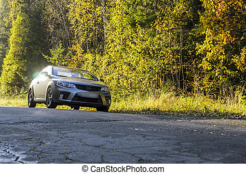 Car on the forest road in autumn