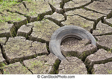 Old tire - Small lake drying out in the summer