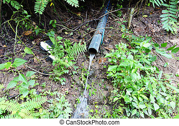 water pipe - plastic water pipe in a forest