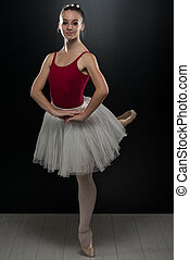 Gorgeous Ballerina In Action - Beautiful Female Ballet...