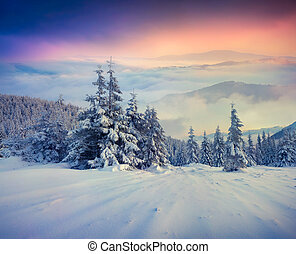 Foggy winter sunrise in the mountains. Retro style.