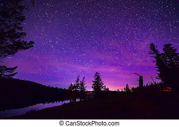 Purple Stary Night Sky Over Forest and Lake - Forest and...