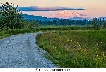 Distant Mount Baker in Pink Sunset Light - Peak of Mount...