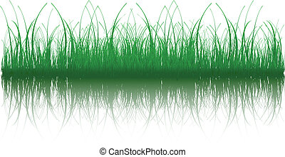 Grass - Illustration of grass with reflection. Available in...