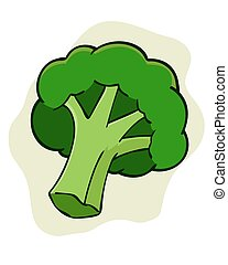 Broccoli - a simple vector illustration of a broccoli