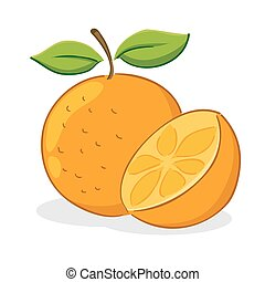 Orange Fruit - Vector illustration of an orange fruit