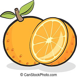 Orange Fruit - Sliced vector orange fruit