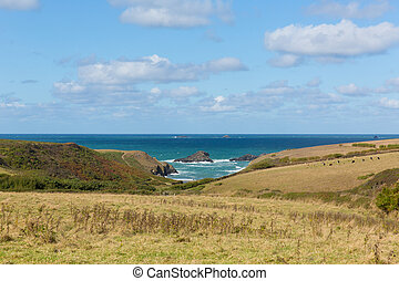 Porth Mear Cornwall England uk - View to Porth Mear near...