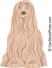 bearded collie dog cartoon - Cartoon Illustration of Funny...