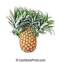 Exotic mutation pineapple - Close up exotic mutation...