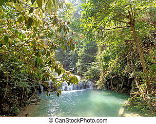 River and waterfall in the rainforest on a sunny day