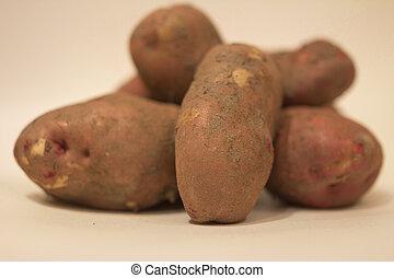 isolated object - Potato tubers svezhevykopannogo on a white...