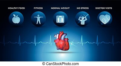 Cardiology health care icons and heart anatomy with normal...