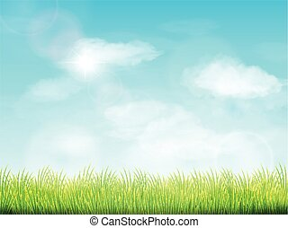 blue sky and field of green grass background