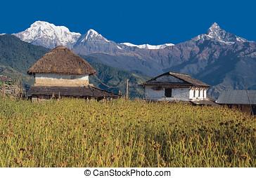 Mt MachhapuchhreFishtail, Annapurna South Hiunchuli with...
