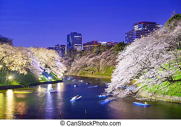 Tokio, imperial, palacio, foso, en, el, primavera,