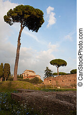 Palatine Hill, the centermost of the Seven Hills of Rome and...