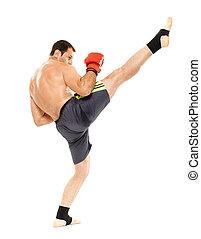 Muay thai trainer executing a kick - Kickbox or muay thai...