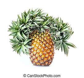 Exotic mutation pineapple - Close up exotic mutation...