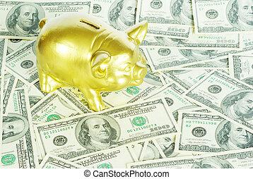 piggy bank - gold piggy bank on a  dollars