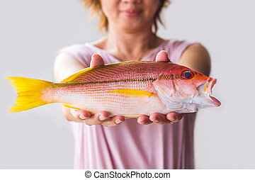 Young woman holding fresh red snapper fish. - Close up young...