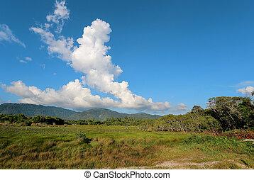 tropical landscape with cloud