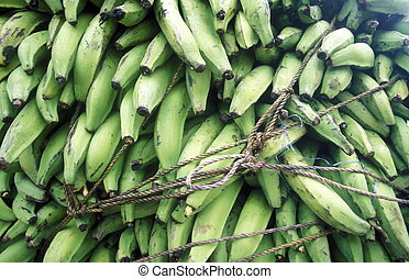 AMERICA CARIBBIAN SEA DOMINICAN REPUBLIC - Bananas at the...