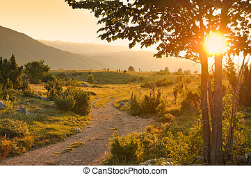 Rural road on sunset
