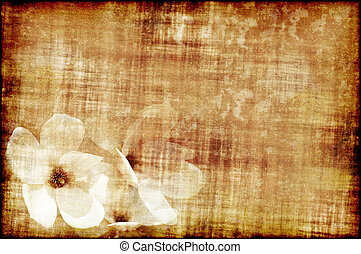 Old paper with magnolia - Ancient piece of papaer with three...