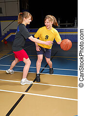 Basketball Scrimmage - Two female basketball players...