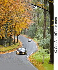 Cars Driving a Windy Road in Autumn - Two cars driving along...