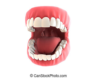 denture - 3d rendered illustration of human teeth