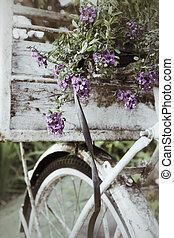 型, 花, 自転車
