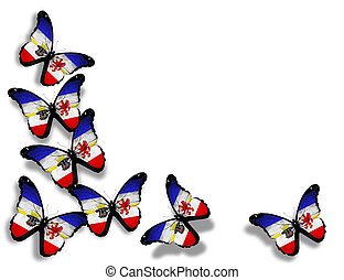 Arkansas flag butterflies, isolated on white background -...