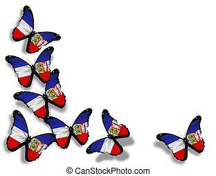 Schleswig-Holstein flag butterflies, isolated on white...