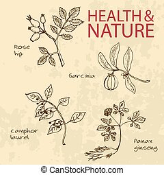 Handdrawn Illustration - Health and Nature Set. Natural...