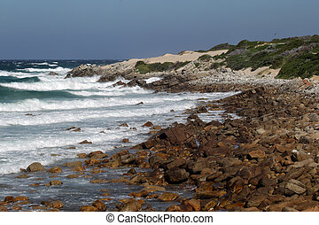 Coast at Cape St Francis, South Africa - Coastal landscape...