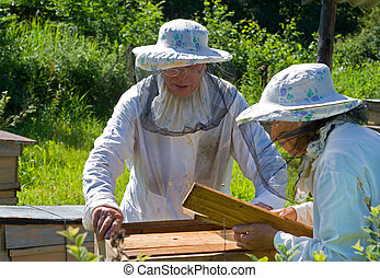 Beekeepers 3 - Two beekeepers work on an apiary.