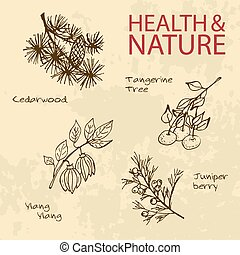 Handdrawn Illustration - Health and Nature Set. Labels for...