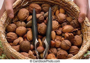 Basket of walnut, almond and hazelnut, with nutcracker
