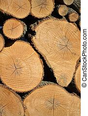 apilado, pila, de, cortado, madera,