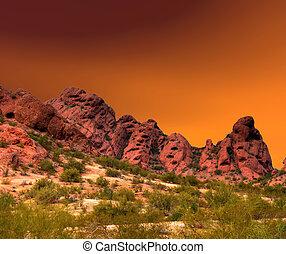 Desert Landscape - Spring landscape in the Arizona desert...