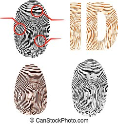 Fingerprints Vector Illustrator eps 10