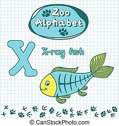 Colorful childrens alphabet with animals, X-ray fish