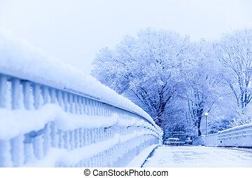 Snow, snow scene, covered with snow in Japan