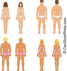 vector young woman and guy in underwear. Body templates -...