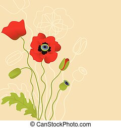 Red poppy on beige background