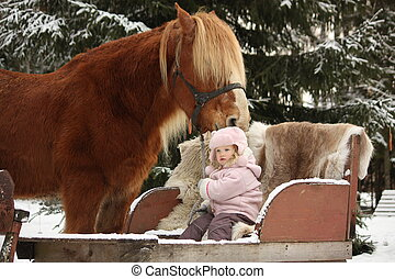 Cute little girl sitting in the sledges and big palomino draught