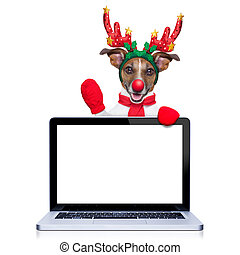 christmas dog with reindeer costume behind a laptop computer...