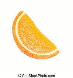 lobule of orange on a white background